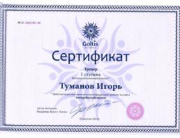 сертификат--1-ступень-Исцеляющий-импульс
