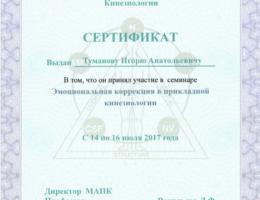 сертификат-эмоциональная-кинезиология